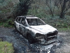 Remains in burnt-out car were those of Mikus Alps
