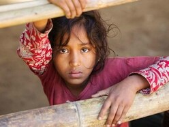 Rohingya people are victims of 'crimes against humanity', Sciaf director says