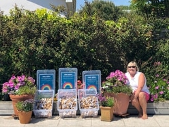 Guernsey Electricity gives away seeds to encourage pollinators