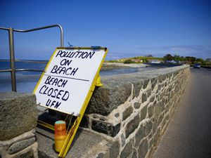 Picture By Peter Frankland. 08-06-20 Perelle. Signs have been put up that the beach is closed due to pollution.. (28344515)