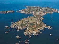 Sark, Alderney people might not need job to move here