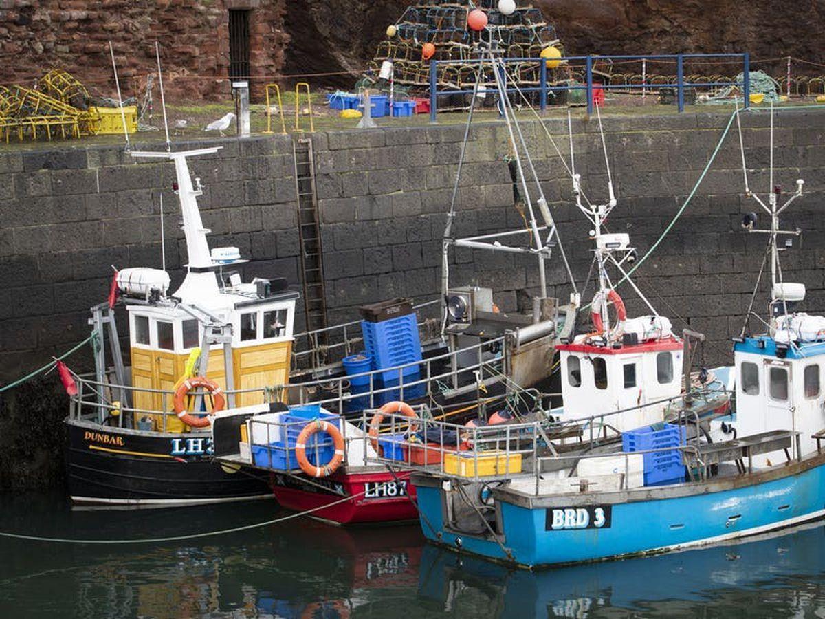 Fishing boats (29188670)