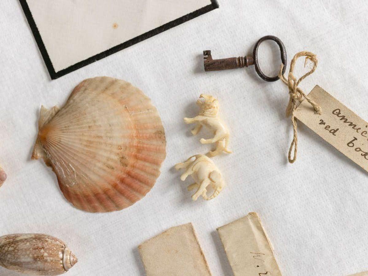Keepsake box belonging to Darwin's daughters returns home