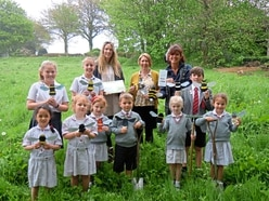 Pupils abuzz about bees