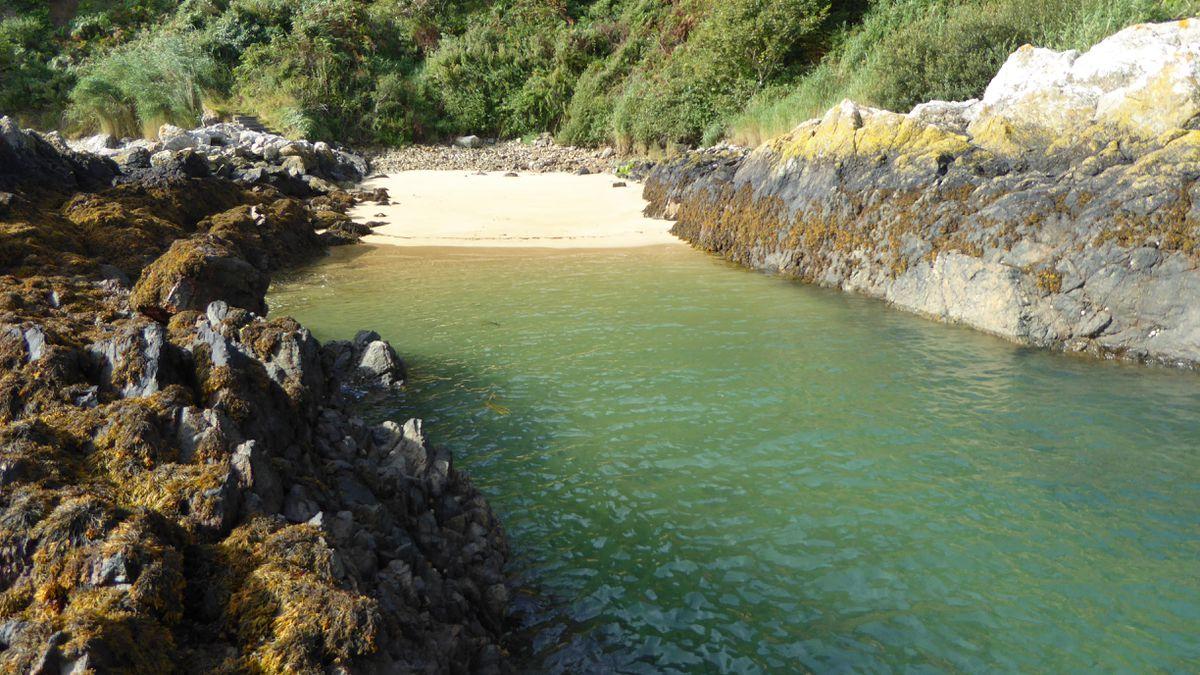 Divette Bay (29533114)