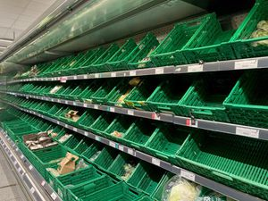 One in six unable to buy essential food items in past two weeks, survey suggests