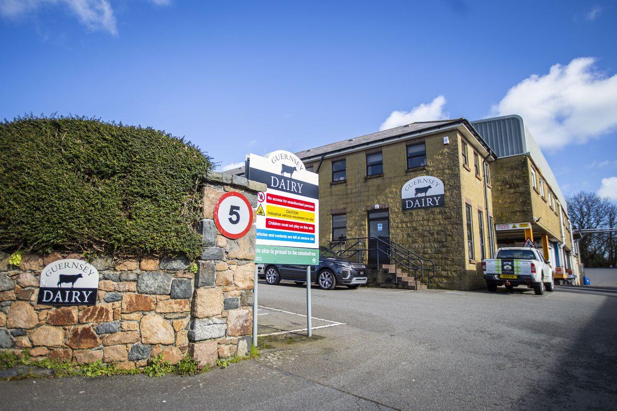 Guernsey Dairy. (29439681)
