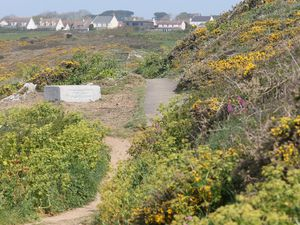 Icart cliff path, St Martin's. (Picture by Adrian Miller, 29408848)