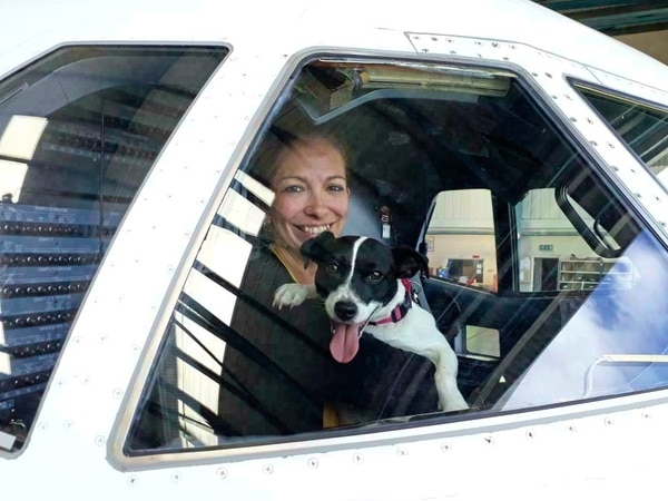 Aurigny to make it easier for pets to fly