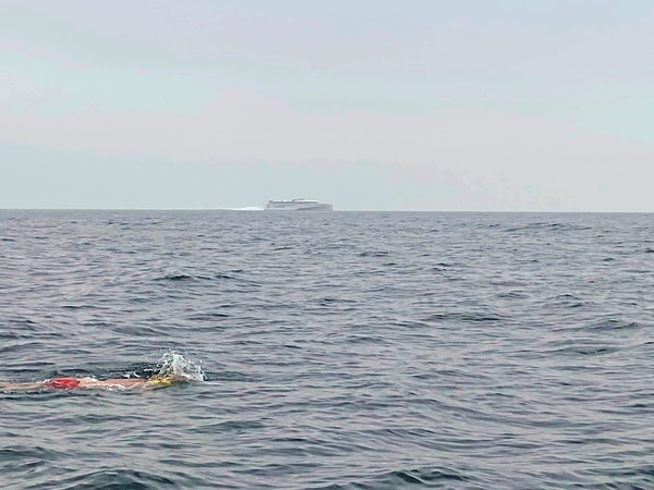 Guernsey to France swim 'learning curve'