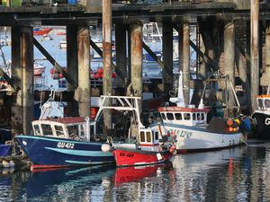 Buying fish caught from an unlicensed boat is to be made illegal. (Picture by Adrian Miller, 29376678)