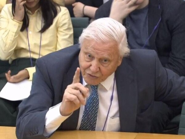 Sir David Attenborough: People are 'fed up' with European Union