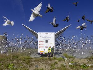 Chris George took this picture of the release of thousands of pigeons from one of the National Flying Club events.