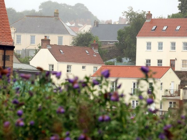 Property sales picking up as prices back on the rise