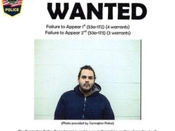 I'll surrender for 15,000 wanted poster 'likes', says fugitive