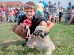 Pooches pull in the crowds at Saturday's popular South Show