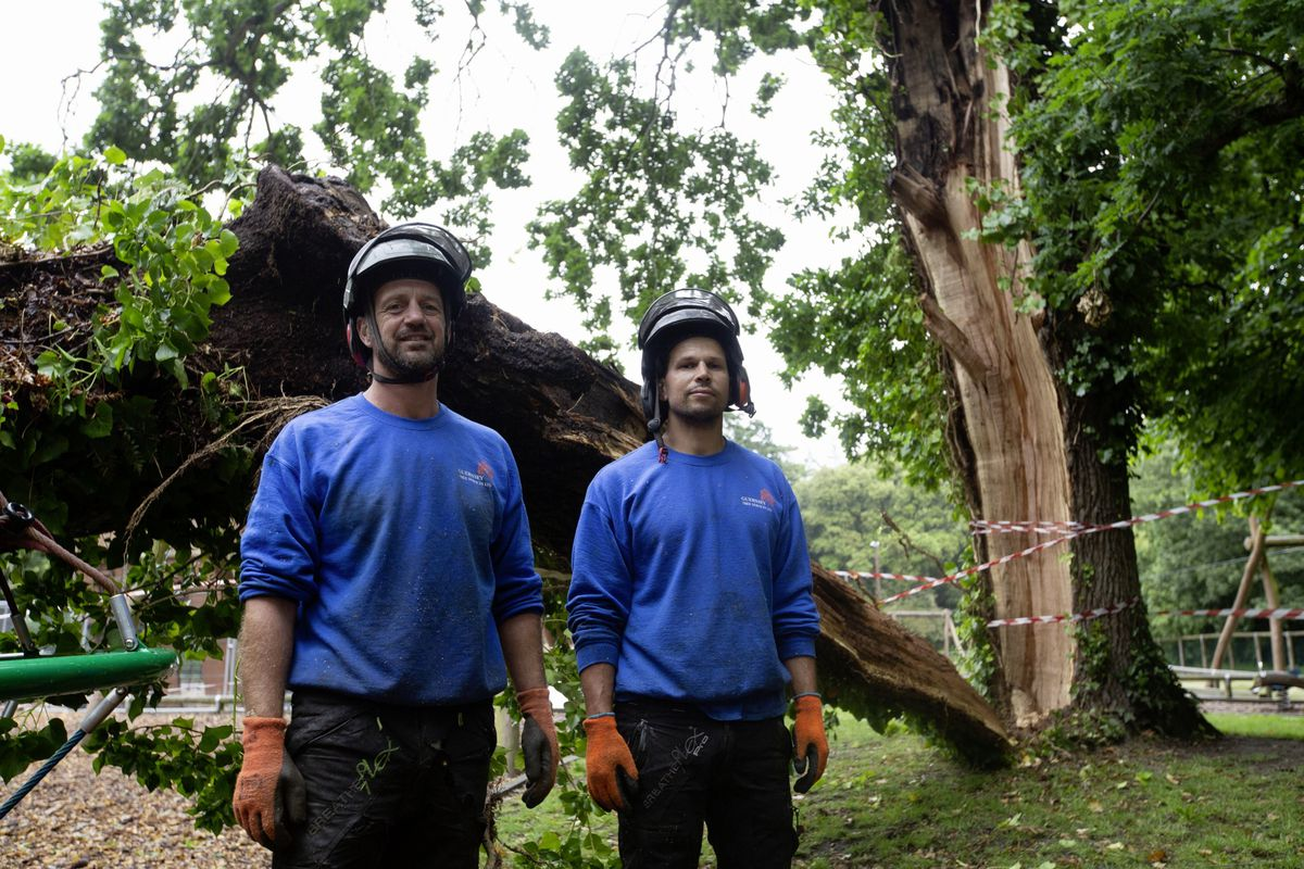 Guernsey Tree Services were called, with owner Ric David, right, deciding it was best to take the whole thing down. With him is Andy Torode.  (29683408)
