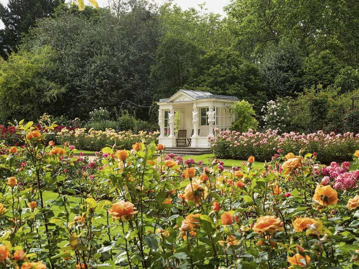 A behind-the-scenes look at a year in the life of the Queen's garden