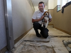 GSPCA appeals for £20,000 to pay for kennel floor work