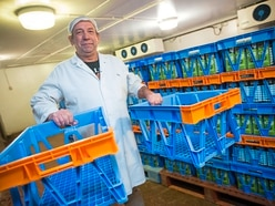 Dairy considering amnesty to get its milk crates back