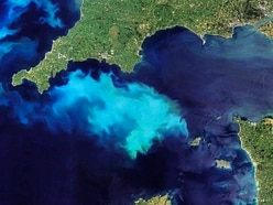 NASA records large bloom of phytoplankton close to island