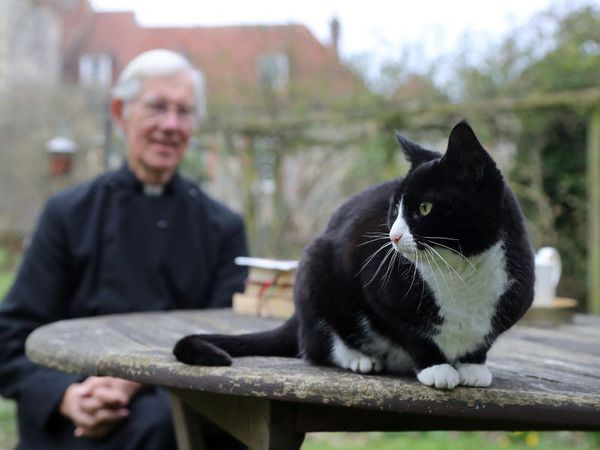 Purrs and prayers: a year of video sermons and cat mischief at cathedral