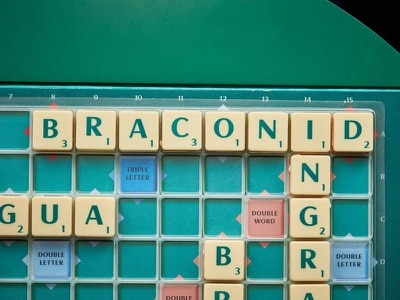 Scrabble adds 300 new words and finally it's OK to put down OK