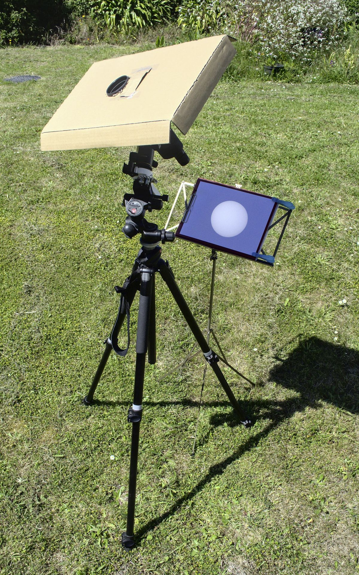Projecting an image of the Sun through a small telescope onto a white card results in a crisp, much larger image that can show sunspots. To make sure no one can look through the telescope, shield the area or enclose the telescope and screen in a box. Cover lenses when not in use to protect equipment and people. (29628415)