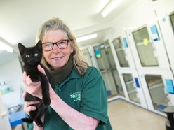 GAA 'can look after your pets if you fall ill'