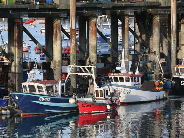 Fish Quay, St Peter Port Harbour. (29441072)