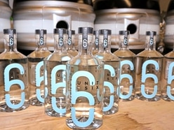 Premium gin the new line from craft beer specialist