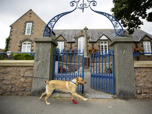 Harvey being taken for a walk past the St Martin's constables' offices. (Picture by Peter Frankland, 29832597)