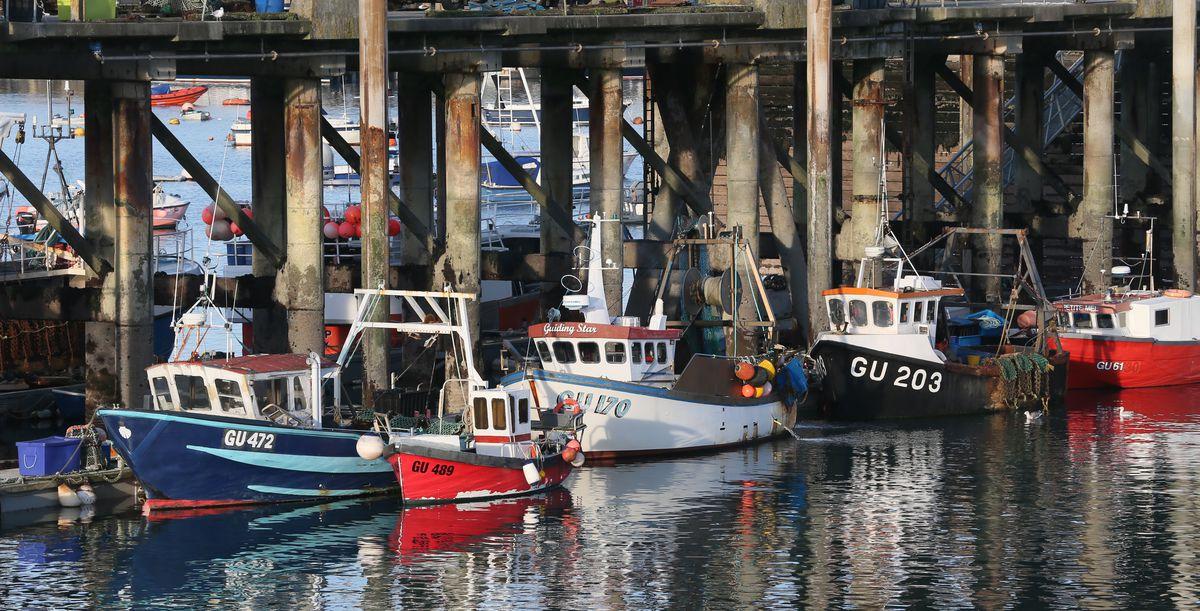 Fish Quay, St Peter Port Harbour. (29441072)