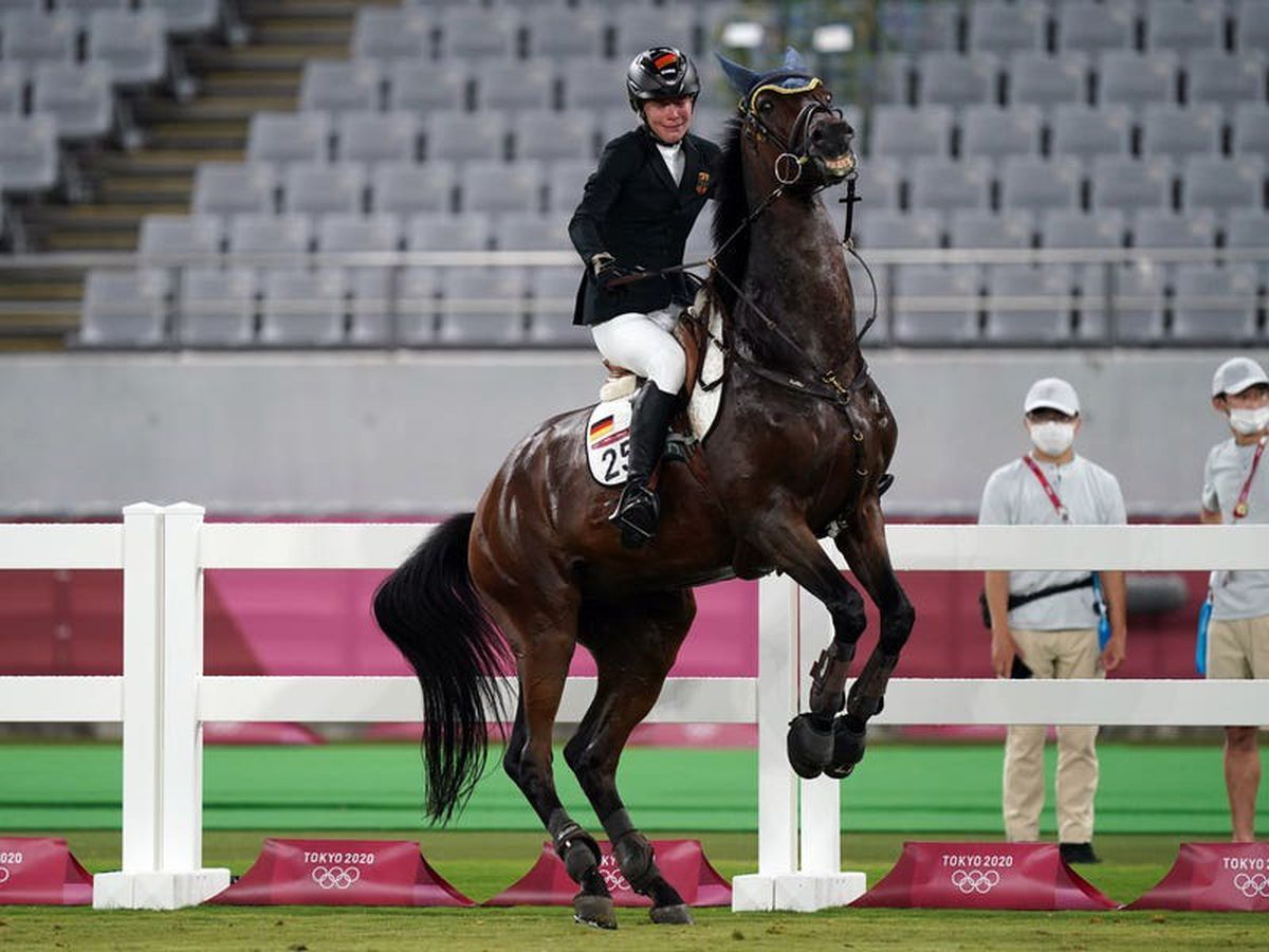 Modern pentathlon governing body launches review after coach punches horse